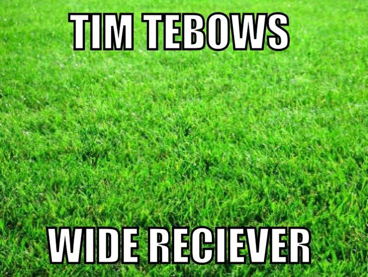 NFL+Football+Memes | ... NFL Memes, Sports Memes, Funny Memes, Football Memes, NFL Humor, Funny