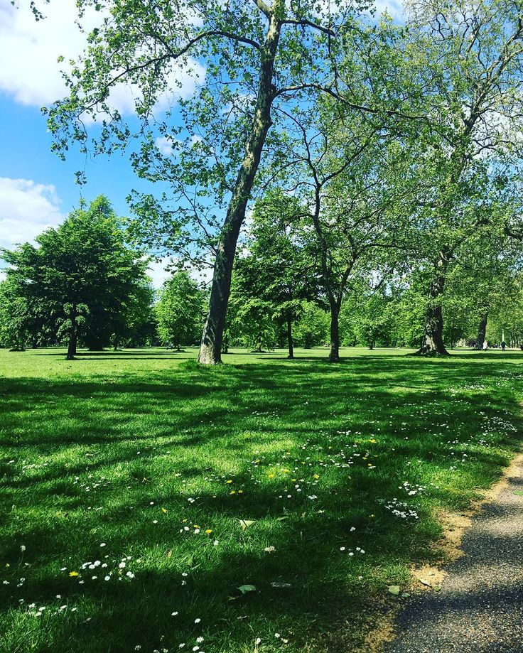 My office for the day  after a 10K run! #lifeisgood #running #nike #fitfam #fitlondoners #nevermissamonday #londonlife #blessed #fitness #fit #run #london #spring #whatiseewhenirun #bbg #mondayvibes by iam_anaisanais