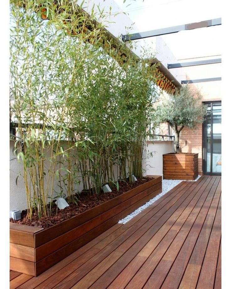13E Continuamos transformando espacios y logrando ambientes sencillos pero llenos de calidad y buen gusto! Espacios verdes de vanguardia para #GenteVIP! #Cedro y #Bambú ▫ ➡Contáctanos: GramasdeOcc@gmail.com ▫ #Maracaibo #CiudadDePanamá |Fotografía por WOA.| ▫ #paisajismo #pedreríamonumental #accesorios #jardinesEspectaculares #arquitectura #portafolio #paisajes #jardines #diseño #decor #instalacion #renovacion #jardinesmodernos #arquilovers #top #casasmodernas #homestyle #instade...