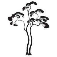 Šablóna na maľovanie - Strom