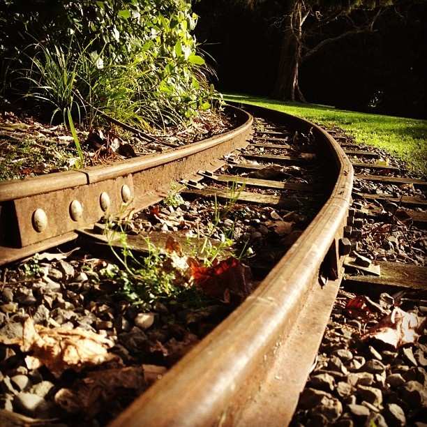 The tracks are as beautiful as the ride at Esplanade Scenic Railway in Palmerston North. Toot toot! #instagram