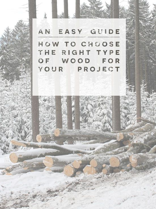 Getting Started // How to Choose the Right Type of Wood for Your Projects   The Design Confidential