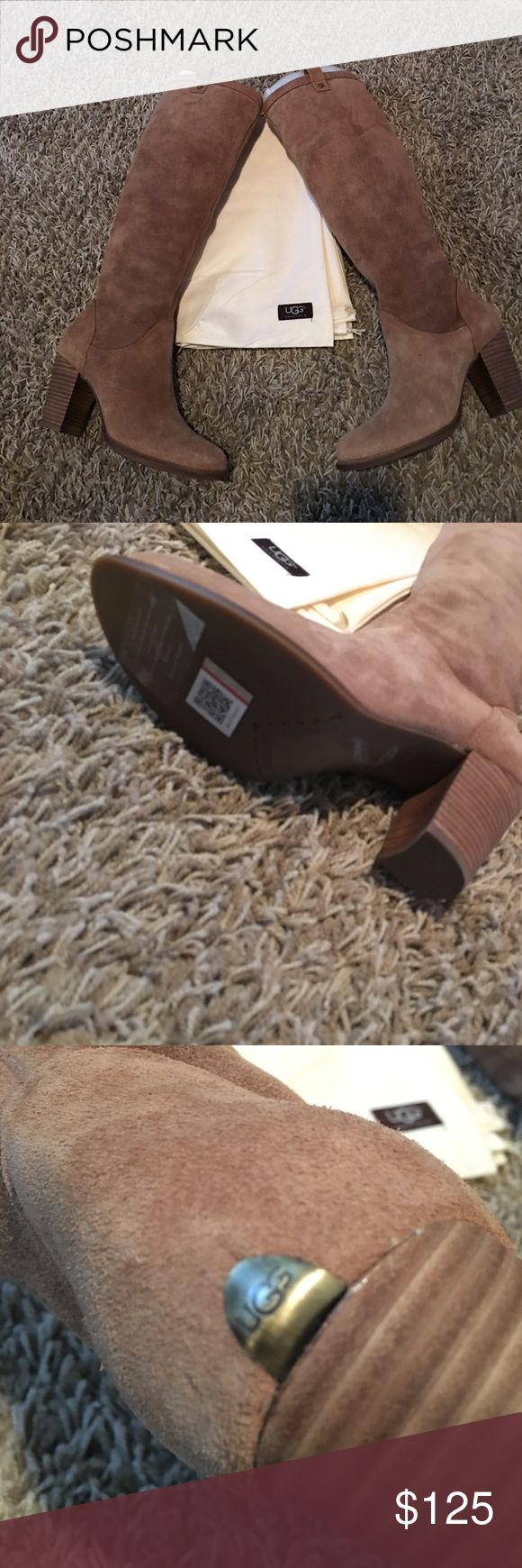 UGG Ava long boots New in box UGG Ava long boots. The color is chestnut. Comes with dust cover. Authentic. A must have! UGG Shoes Heeled Boots
