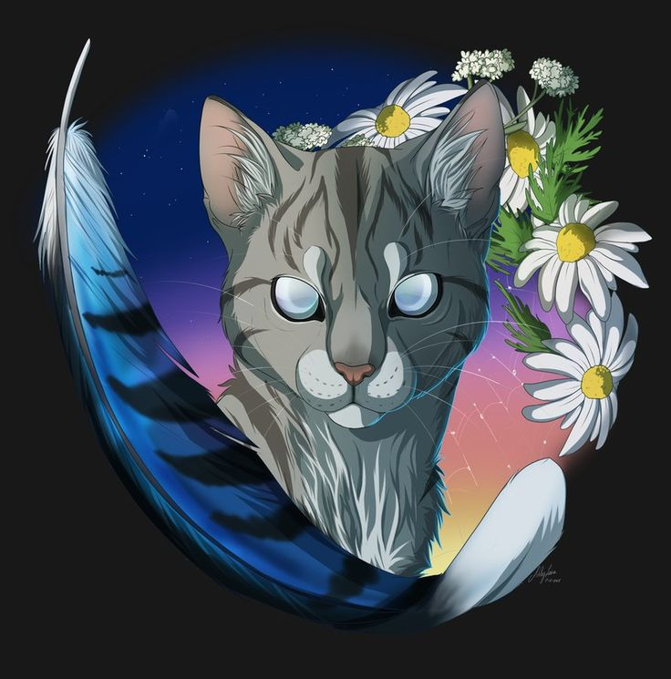 Warrior Cats Jayfeather 17 Best images ...