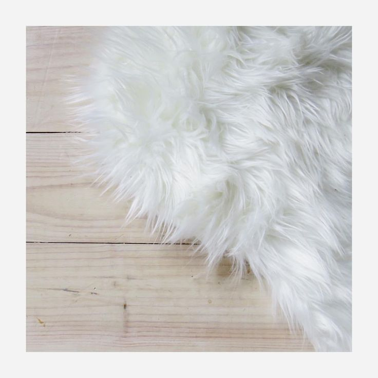 White fur and white washed floors, is there a more perfect backdrop 🦄🎀. (ellek.ay) on Instagram