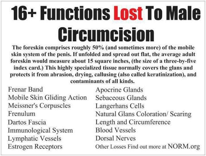 The biblical mention and importance of circumcision