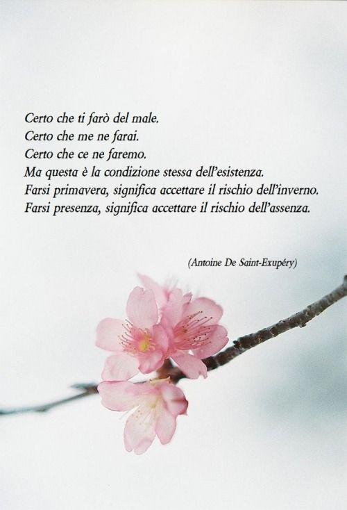 Frasi damore  http://enviarpostales.net/imagenes/frasi-damore-149/ #amore #romantiche #frasi