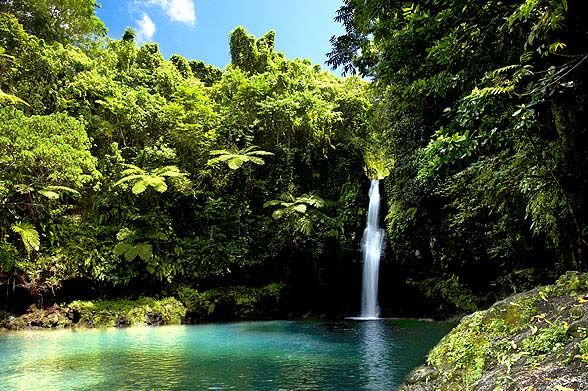Samoa Tourism Authority : Waterfalls Aplenty