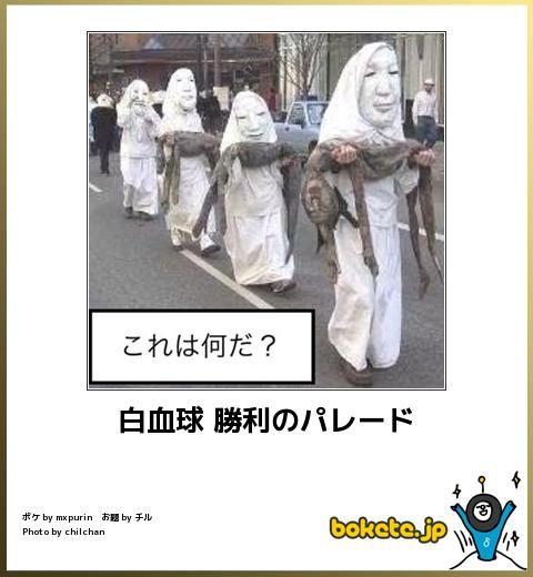 白血球 勝利のパレード