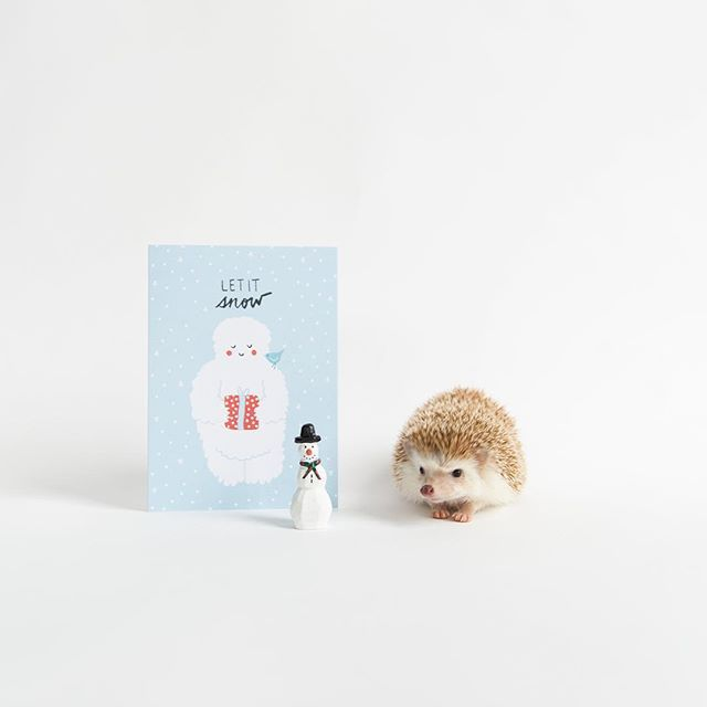 Let it snow! Or rain. Whatever the weather - send a cutie holiday card to match. ❄️⛄️⚡️☔️⚡️⛅️ Shop this card on the site (link in bio) #letitsnow #hedgehog #snowman // 🎨 by @oneplusonedesign + 📷 credit @ameliahedgehog