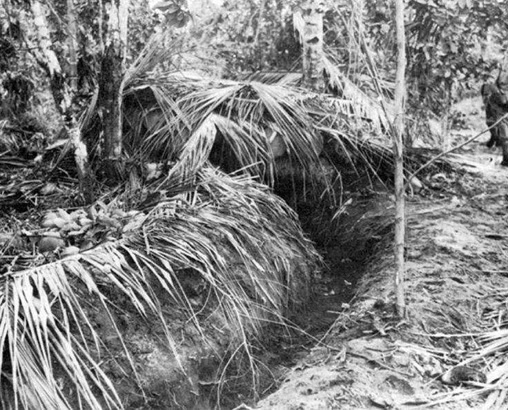 Japanese bunker at Buna (top) made from coconut logs, with firing trench at entrance. From Wikipedia.