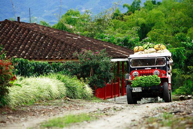 El Paisaje Cultural Cafetero de Colombia, un tesoro nacional