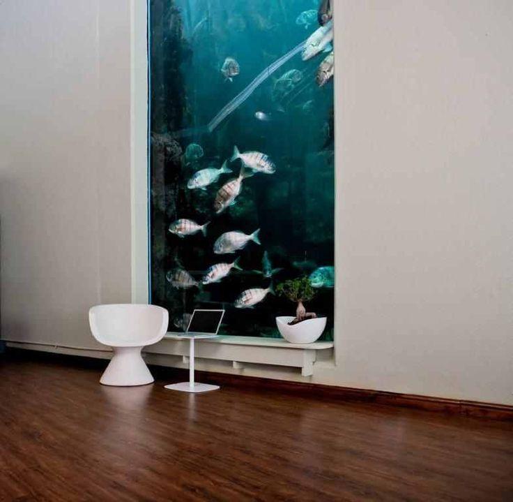 Wall aquarium aquariums pinterest for Fish tank in wall
