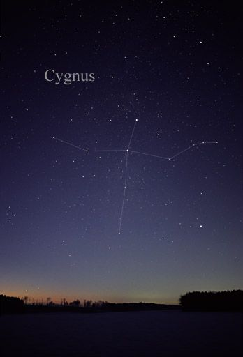 Cygnus, The Swan A pretty big constellation, from what I've seen myself.