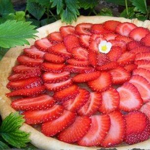 Tarte aux fraises et compote de rhubarbe
