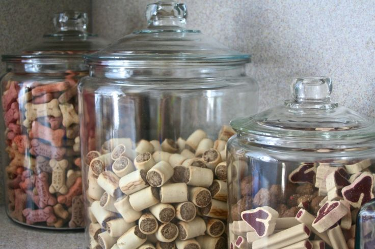 even doggie treats look great displayed in glass jars -- Yes they do! I've only got one, but I'd love a few more matching jars...