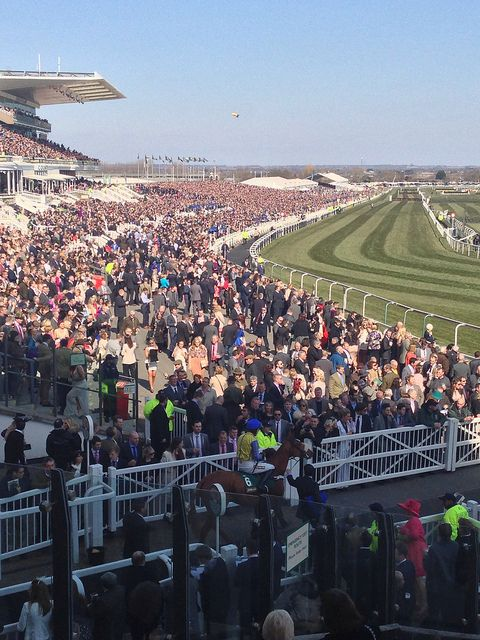 Aintree Horse Racing Tips
