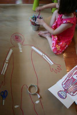 human body map