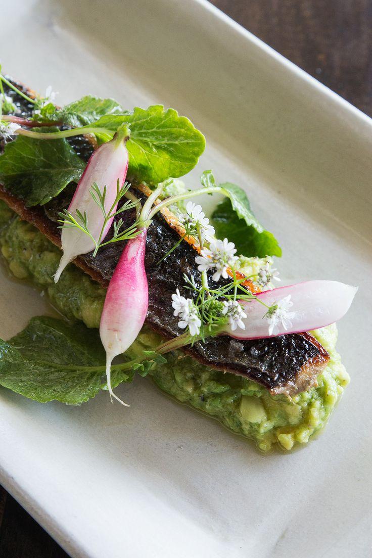 Monterey Sardine, fork crushed avocado, radish, cilantro delfino at Haven, Oakland via HonestlyYUM