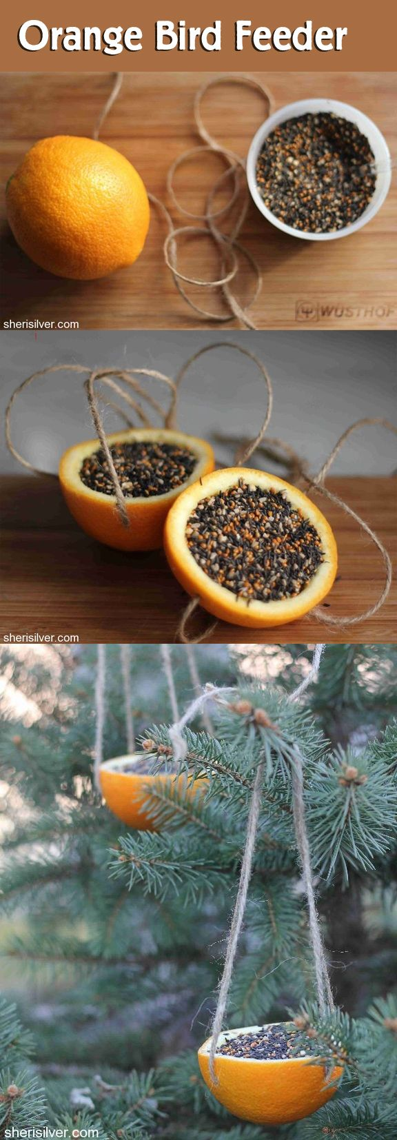 Orange Bird Feeder: 1 orange; 4 pieces of string cut into 24″ lengths; bird seed ~ With a sharp knife, cut the orange in half