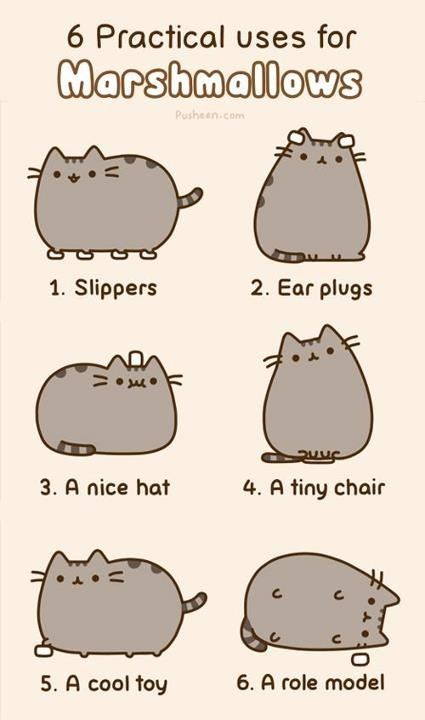 6 practical uses for Marshmallows!!! I LOVE PUSHEEN!!!!!!!!!!!!!!!!!!!!!!!!!!!!!!!!!!!!!!!!!!!!!!!!!!!!!!!!!!!!!!!!!!!!!!!!!!!!!!!!!!!!!!!!!!!!!!!!!!!!!!!!!!!!!!!!!!!!!!!!!!!!!!!!