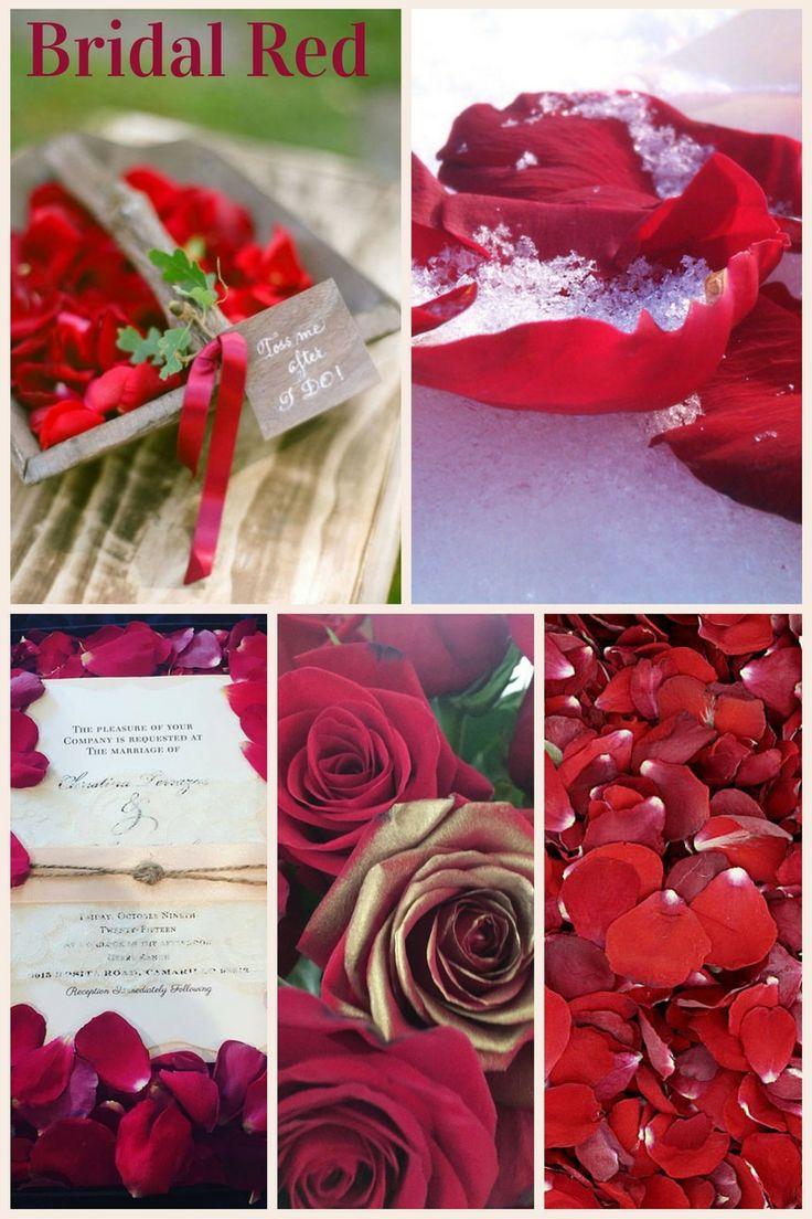 Dried rose petal chinese rose flower rose tea buy rose petal - Bridal Red Preserved Freeze Dried Rose Petals