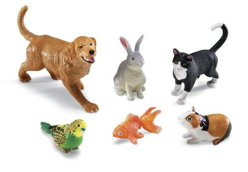 Learning Resources Jumbo Domestic Pets Learning Resources,http://www.amazon.com/dp/B000MWWWVG/ref=cm_sw_r_pi_dp_IZXotb1FH66K510P