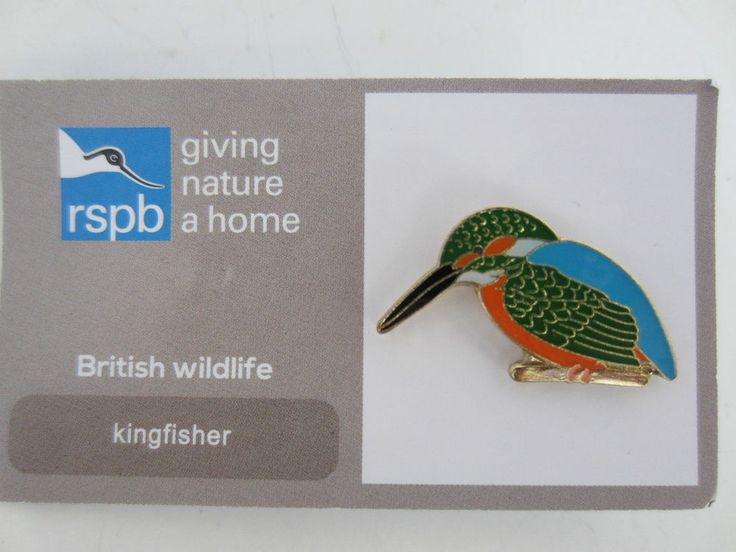 Charity pin badge rspb enamel giving nature a home kingfisher british wildlife
