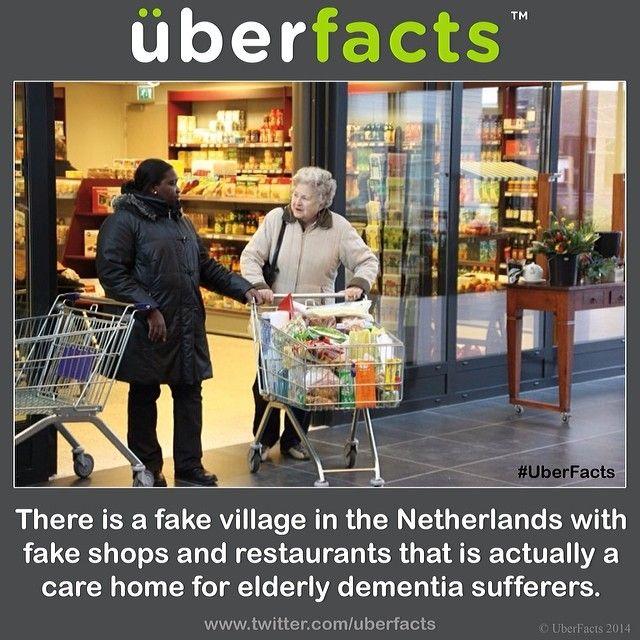 107 Best Ot Alzheimers Images On Pinterest Dementia