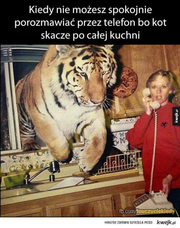 #touczucie #humor #humorobrazkowy #kwejk