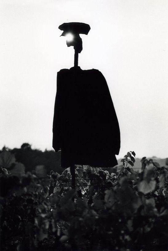 Robert Doisneau // Scarecrows -  Buthiers (Seine et Marne) Juillet 1964