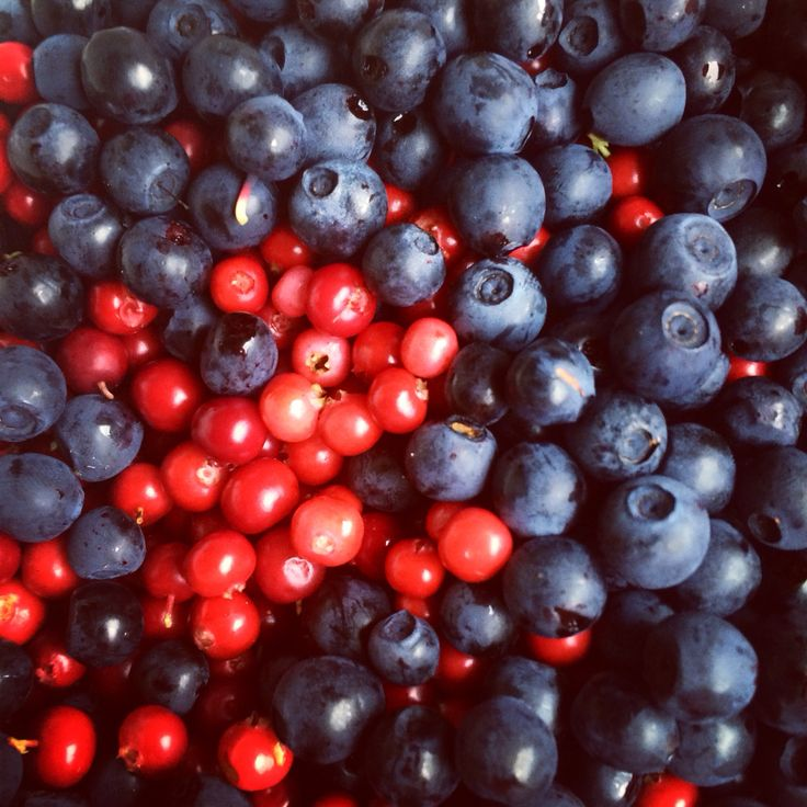 Fresh berries from the Finnish nature. #purenature #superfood #blueberry #lingonberry #naturalfoods #finland