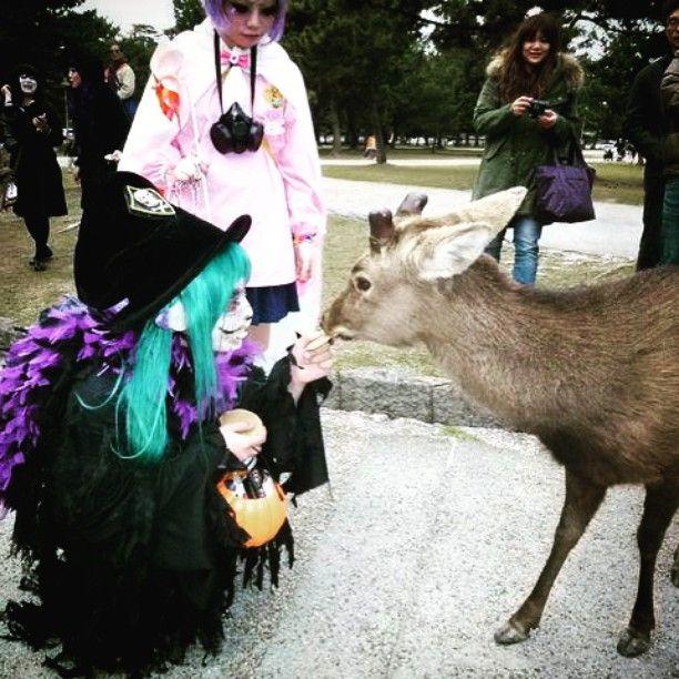 Zobacz na Instagramie zdjęcie użytkownika @halloween_96 • Polubienia: 329