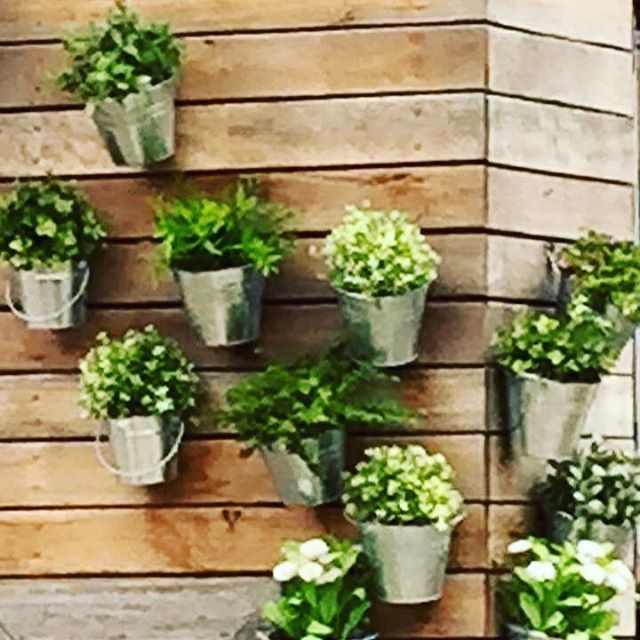 Add some more green to your life! You can grow plants or herbs even if you don't have much space. Check out this idea which could work on a wall, a fence or even on a balcony. Plants are great, but herbs are better as you can enjoy the view, enjoy the fruits of your labour and eliminate the packaging used if you used store bought! Plant a little something today x