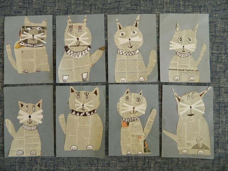 kočky z novin