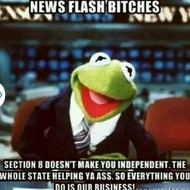 76f78f39e43394f32dc6f962f5fda913 sipping tea kermit the frog meme 72 best kermit meme and more images on pinterest funny stuff