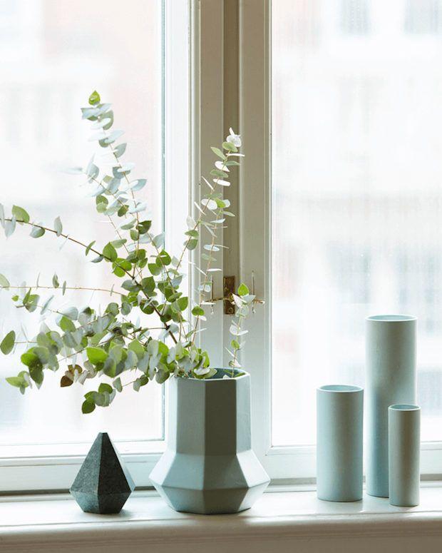 227 besten plants flowers bilder auf pinterest deko ideen skandinavisches wohnen und. Black Bedroom Furniture Sets. Home Design Ideas