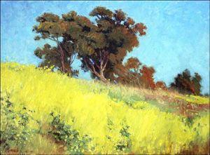 Stephen Mirich Gallery - Wild Mustard