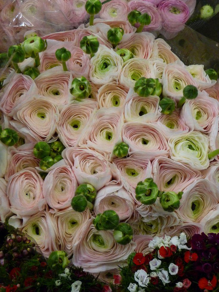 les 25 meilleures id es de la cat gorie bouquet de renoncules sur pinterest bouquet bouquets. Black Bedroom Furniture Sets. Home Design Ideas