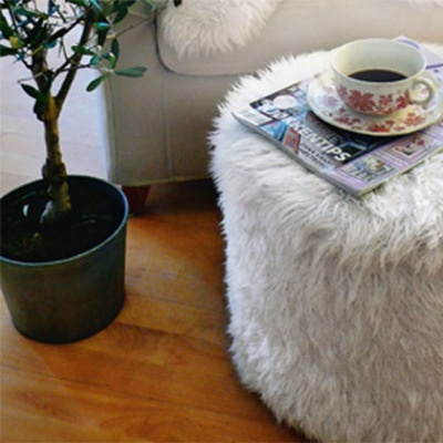 Cool furry footstool