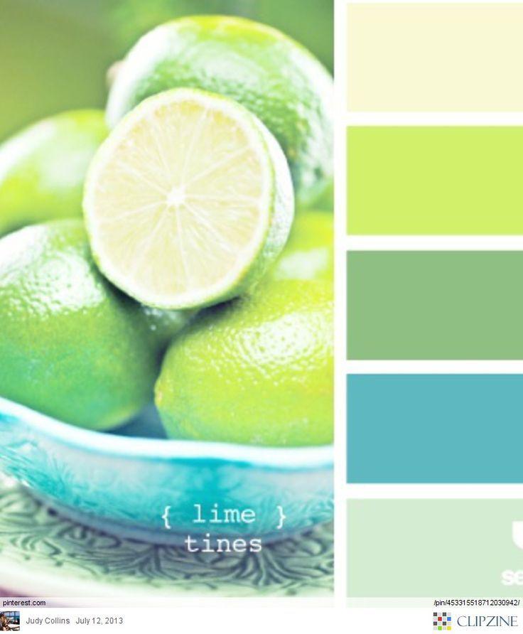 Best 25+ Aqua Color Palette Ideas On Pinterest