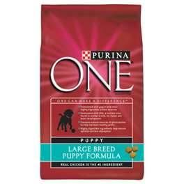 FREE 4lb Bag of Purina ONE Dog Food Coupon by Mail