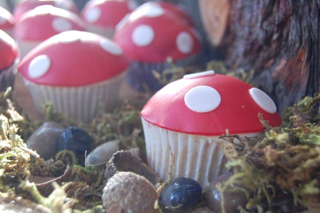 Forest party @ a park - toadstool cupcakes, felt animal masks & acorn necklaces.