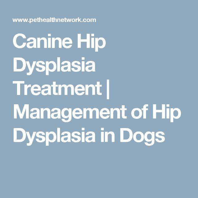 hip dysplasia types and treatment Hip dysplasia in children is associated with developmental dislocation of the hip  (ddh) treatment options include temporizing with medication and/or physical.