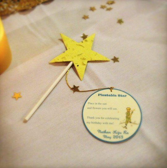 Best Kids Parties: Le Petit Prince My Party | Apartment Therapy Plantable star favor