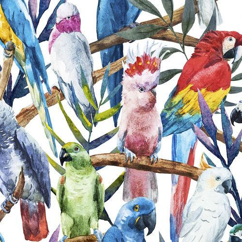 """kids garden and reading area; Found it at Wayfair.ca - Paradise of Birds Removable 5' x 20"""" Wallpaper"""