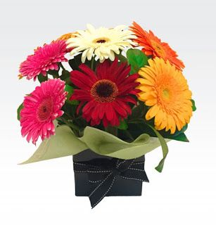 Looking for a reliable and safe way to send a gift? Get fresh cut flowers delivered which is a very popular solution. There can be nothing better than freshly cut flowers to thank some, to send gift or to mark any other occasion. Perth flower delivery is very easy to send, is of good quality and is reliable as well.