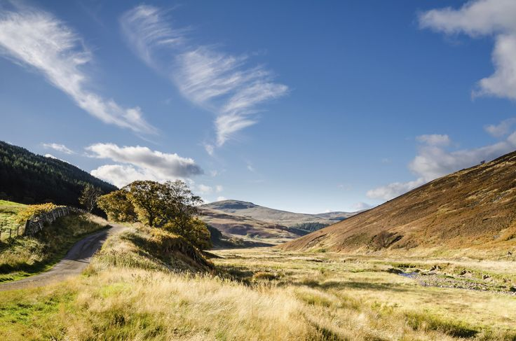 The Cheviot Hills, separating Scotland and England.