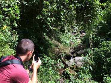 Verne tries to catch an elusive quetzal with his cameraphone, but no luck #Boquete #Panama #RTW #JulesVerne #Quetzal
