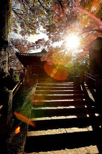 Kitain Temple - Kawagoeshi, Saitama, Japan